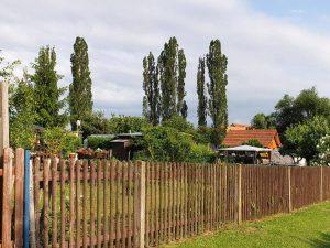 Kleingartenverein_Nessegrund_4